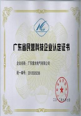 广东民营科技企业证书