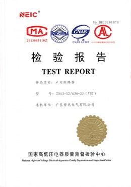 真空断路器型式试验报告